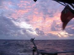 05_Pink_Sunrise.jpg