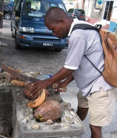 38_StLucia_Soufriere_Denis_Opening_Coconuts.jpg