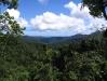 05_Martinique_Overtop_Rain_Forest.jpg