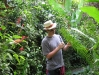 29a_StLucia_Diamond_Gardens_Ferns.jpg