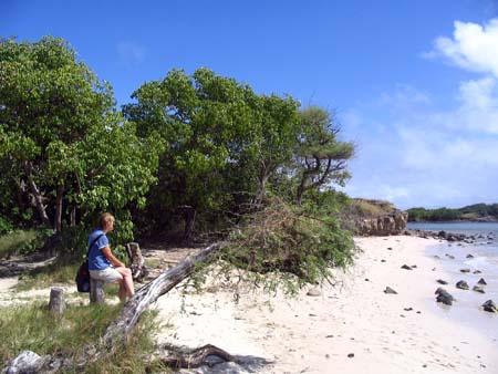 02_Martinique_South Headland Walk_2.jpg