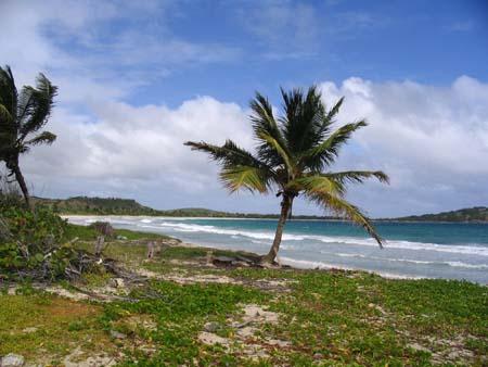 05_Martinique_South_Headland Walk_5.jpg