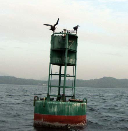 22_canal_buoy.jpg