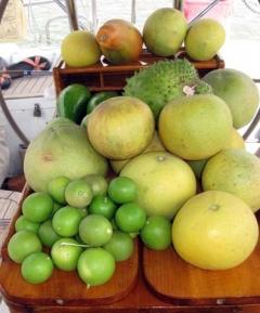 10_Fruit_from_Audette.jpg