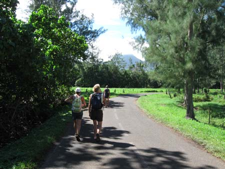 03 Moorea walk.jpg