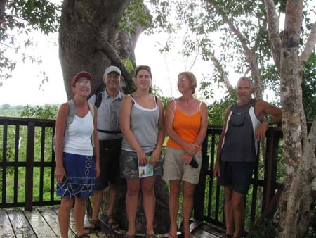 05 high up in a banyan tree.jpg