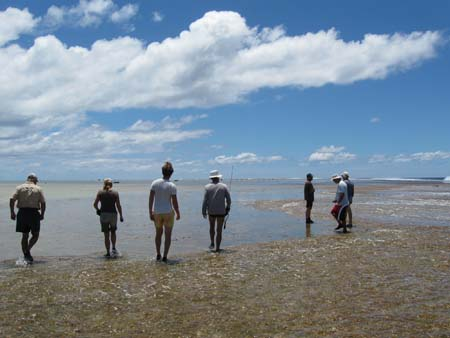01_On_reef_at_low_tide.jpg