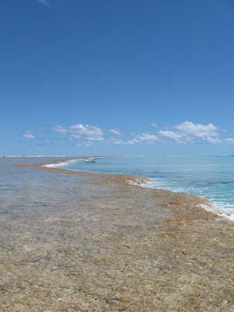 03_water_flows_into_lagoon.jpg