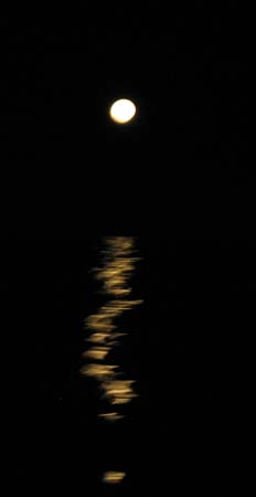 02_Moon_Light.jpg