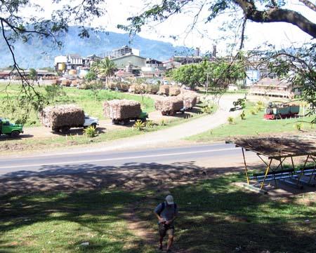 12_Sugar_cane_plant_Labasa.jpg