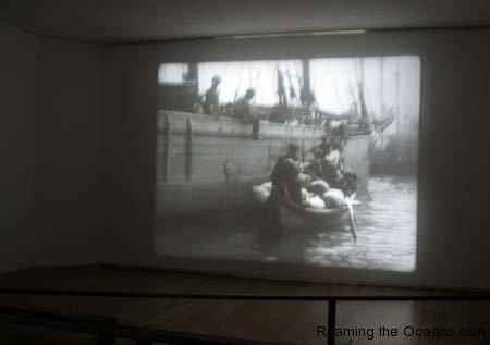 04_Film_exhibit.jpg