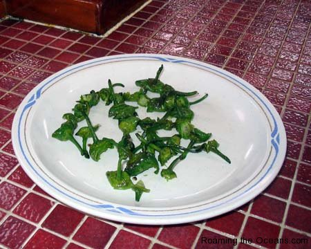 009_Padron_Whats_left_02.jpg